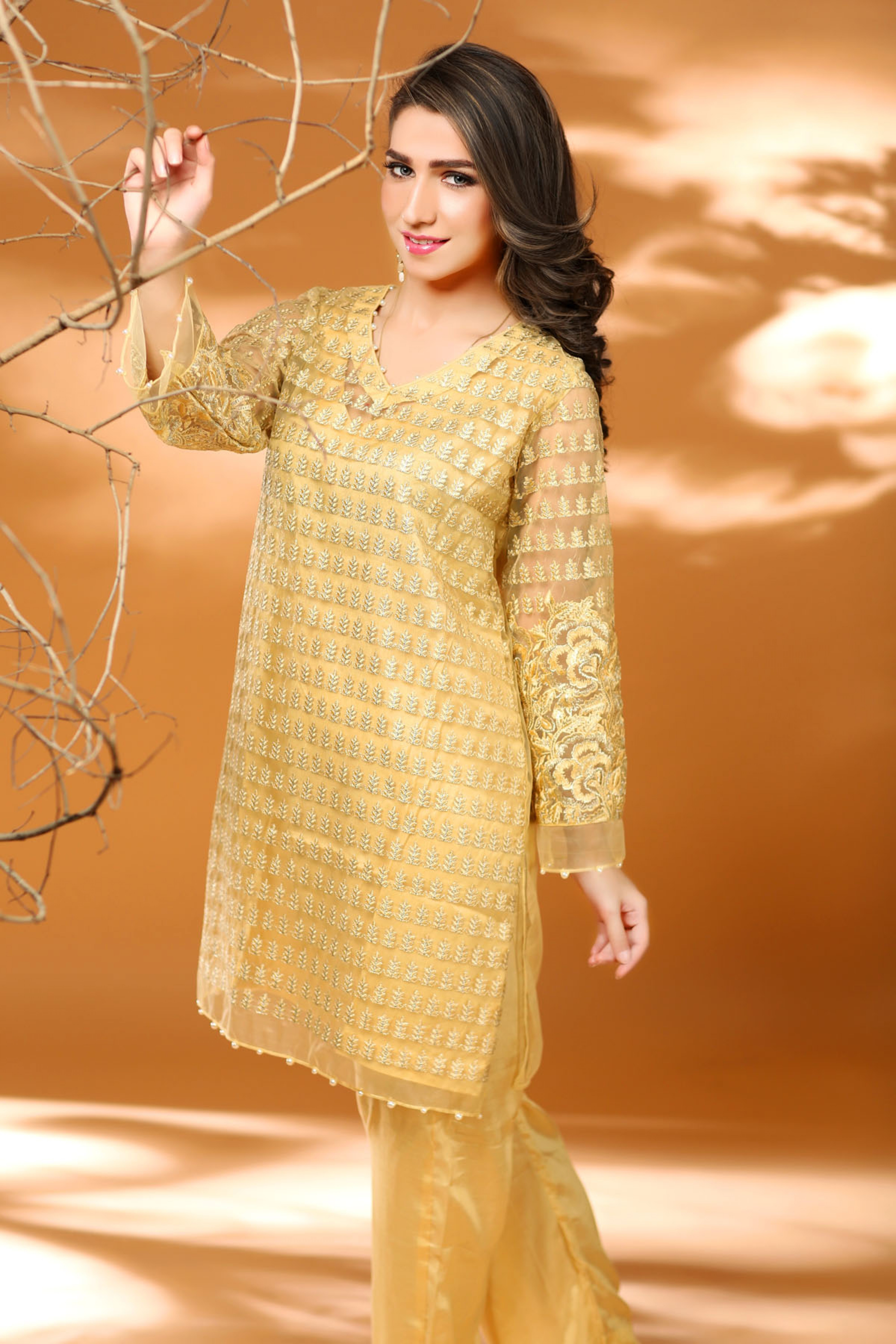 Embroidered shirt with slip & Trouser